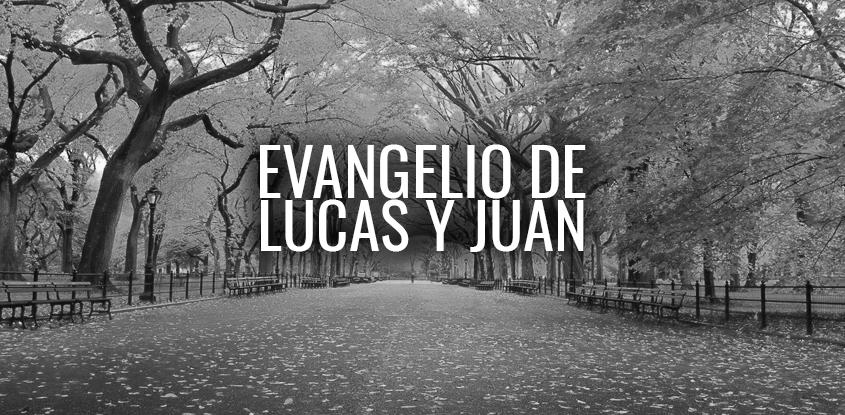 Lucas y Juan- Explorando el nuevo testamento