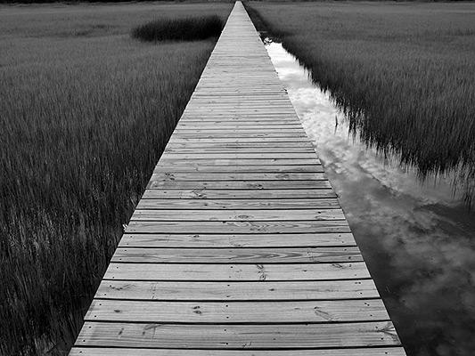 La mejor decisión es ir de la mano de Jesús, así sea cuando vas por el camino estrecho