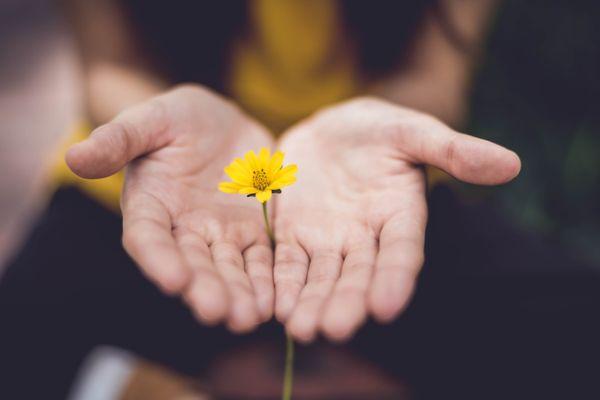 Perdonar te hace bien